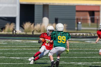 014_JFL_Packers_Cardinals_100817_9097