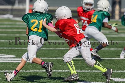 006_JFL_Packers_Cardinals_100817_9086