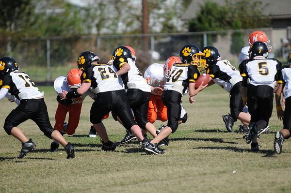 Tigers vs. Cowboys 2008