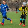 Binningen-Testspiel_DSC2933