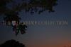 Moon over Mirimichi