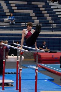 Parallel Bars (4)