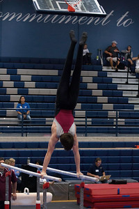 Parallel Bars (7)