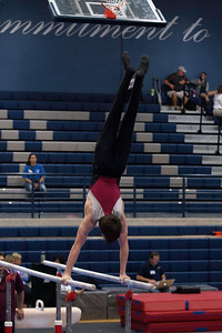 Parallel Bars (8)