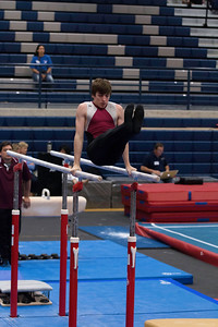 Parallel Bars (5)
