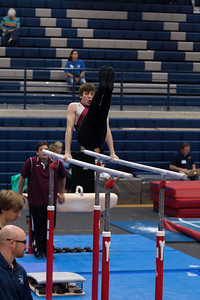 Parallel Bars (2)