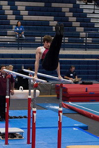Parallel Bars (6)