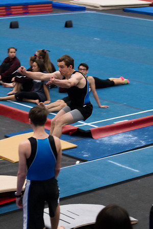 Boys Gymnastics - Regionals Day 2
