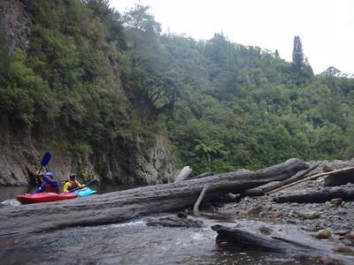 Waiohine Paddle