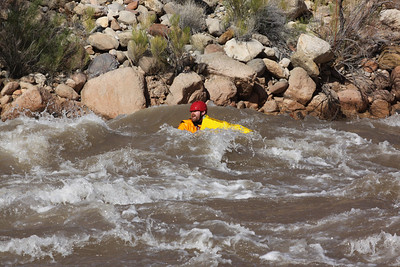 209 Mile Rapid, Colorado River, Arizona, - January 20, 2011