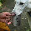Sati, Ken's white German sheperd, is taking a refreshing drink out of Snowpeak double wall titanium cup.  Ken received the mug for leading a trail clearing crew on BWCA Brule Lake Trail trip.  Crew leaders mugs were laser engraved by Riverland Laser, River Falls, Wisconsin.