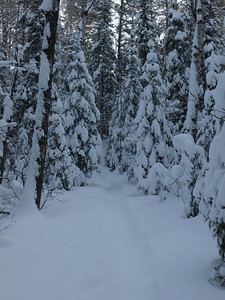 Snow was heavy and we were glad that someone snowshoed on the portage past week.