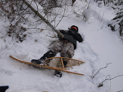 This heavy treefall mangled one of the volunteers.  Dave lies in deep snow slowly succumbing to hypothermia, NOT.  Actually, Dave likes practical jokes.