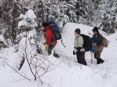 The key to bushwhacking is to avoid potentially thin ice on the creek in the open valley and at the same time to stay out of deep and dense woods.