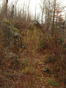 This is Kekekabic by War Club Lake.  Note how heavily overgrown the trail is.  In summer, foliage obscures view.