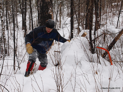 Wyatt tackles deep snow after cutting a treefall.