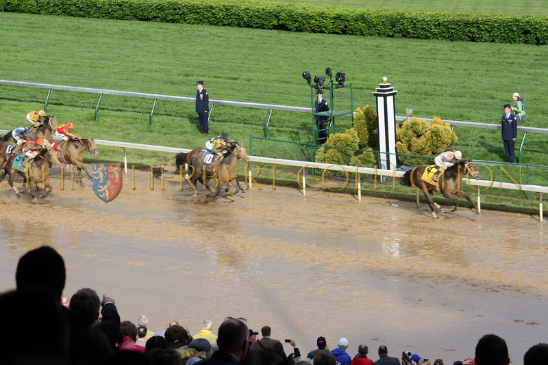 Super Saver ridden by  Calvin Borel, wins the Run for the Roses at the 136th Kentucky Derby. Ice Box place 2nd and Paddy O'Prado placed 3rd