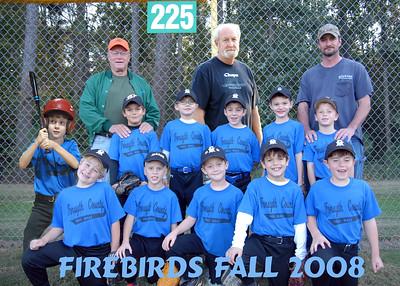 2008 Coal Mt. fall Basseball Firebirds