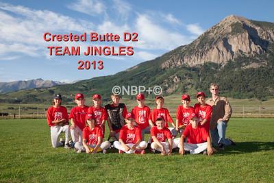 CB D2 Baseball 2013
