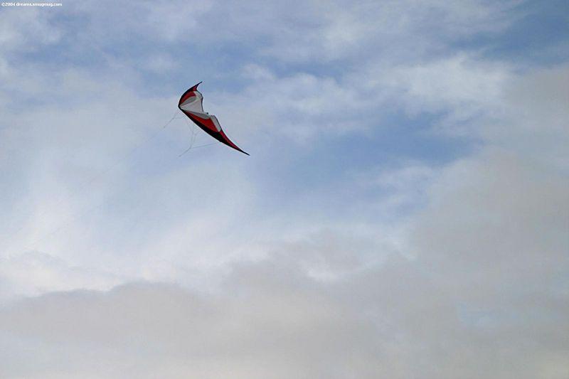 Gemini kite