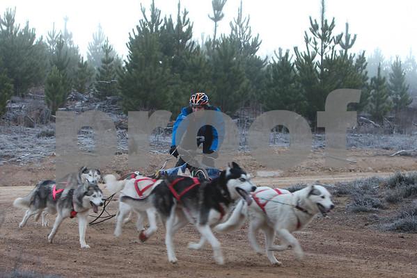 Kowen 2009 - Saturday  6 Dog  Race
