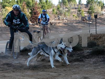 Kowen 2009 - Sunday 2 Dog Race