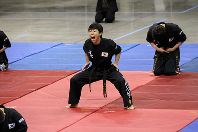 2014 Kuk Sool Won World Tournament Korean Demo Team