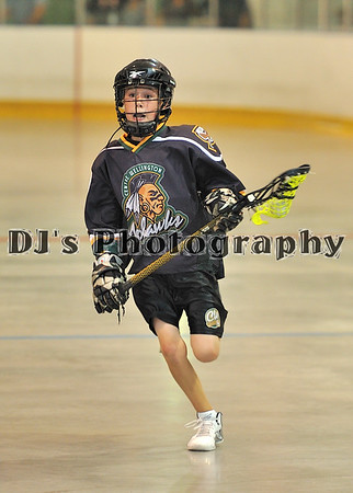 LAX - Wellington at Guelph Aug 3-11