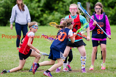 Bulldog Girls LAX 2016-5-21-93