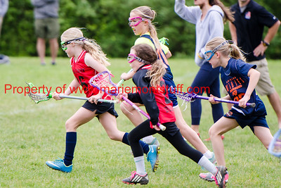 Bulldog Girls LAX 2016-5-21-79