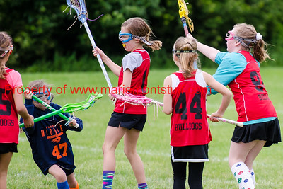 Bulldog Girls LAX 2016-5-21-88