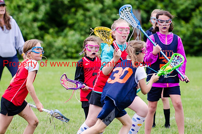 Bulldog Girls LAX 2016-5-21-94