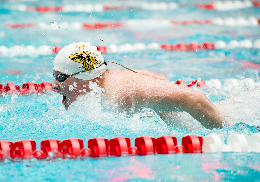 . Thompson Valley\'s Garrett Britt swims the 100-yard butterfly final Saturday afternoon May 21, 2016 during the 2016 CHSAA State Swim and Dive Meet at Veterans Memorial Aquatics Center in Thornton. (Photo by Michael Brian/Loveland Reporter-Herald)