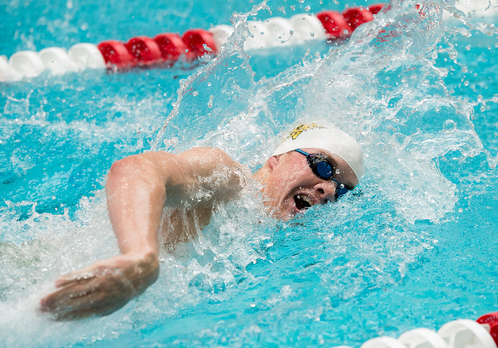 . Thompson Valley\'s Jack Kisch swims the 100-yard freestyle final Saturday afternoon May 21, 2016 during the 2016 CHSAA 4A State Swim and Dive Meet at Veterans Memorial Aquatics Center in Thornton. (Photo by Michael Brian/Loveland Reporter-Herald)