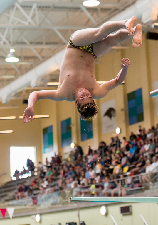 . Thompson Valley\'s Brandon Bicknell dives in the finals Saturday afternoon May 21, 2016 during the 2016 CHSAA 4A State Swim and Dive Meet at Veterans Memorial Aquatics Center in Thornton. (Photo by Michael Brian/Loveland Reporter-Herald)