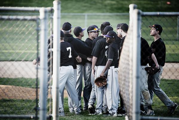 Long Reach Baseball