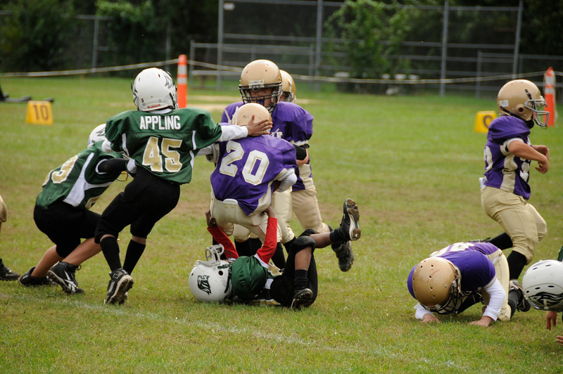 Sayville Flashes 6, Longwood Lions 24<br /> Sunday, September 3, 2010 at 1420<br /> Sayville, NY