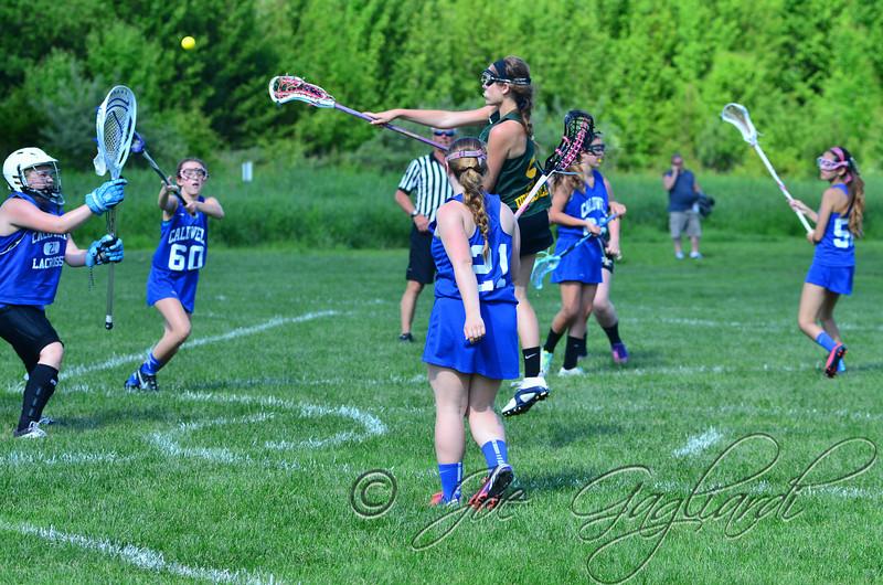 www.shoot2please.com - Joe Gagliardi Photography  From Rock-Den Gold vs. Caldwell 1 game on Jun 07, 2014