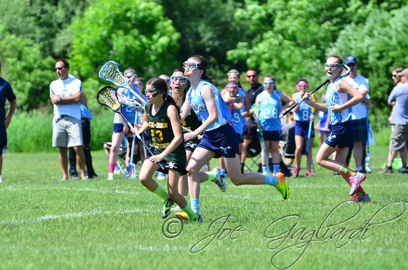 www.shoot2please.com - Joe Gagliardi Photography  From Rock-Den Green vs. Long Valley game on Jun 07, 2014
