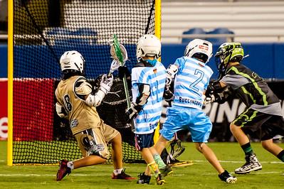 Brevard Lacrosse-7772