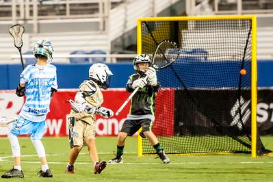 Brevard Lacrosse-7798