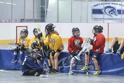 lacrosse festival-8639