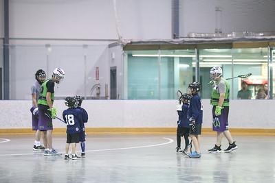 lacrosse festival-8649