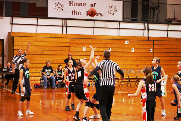 Lady Tigers basketball 08-09