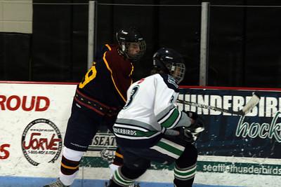 Lake Washington HS Hockey 2008
