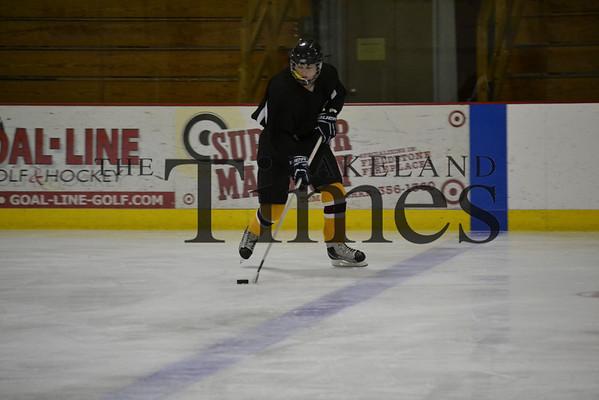 Lakeland Hockey Camp