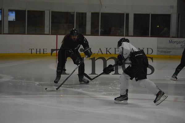 1-3-14 Lakeland Girls' Hockey vs. Northern Edge