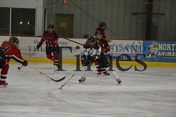Lakeland Girls' Hockey vs. Medford 12-6-13