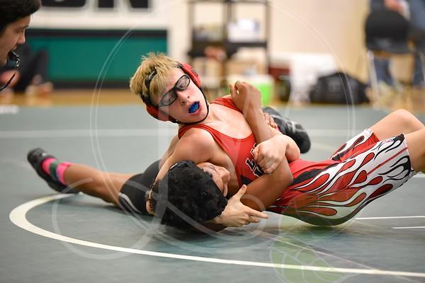 Wrestling GMC's (Junior High) - Lakota West & East - 1.27.17 @ Mason