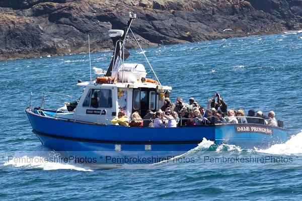 Skomer Boat